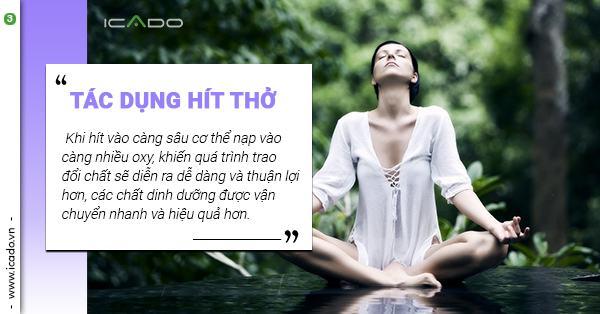 Tìm hiểu chi tiết những tác dụng của việc hít thở đúng khi tập yoga để có thêm động lực và quyết tâm thực hiện.