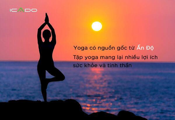 Yoga có nguồn gốc từ Ấn Độ, đây là phương pháp đồi hỏi bạn phải có sự tập trung và đồng nhất giữa hành động và suy nghĩ.