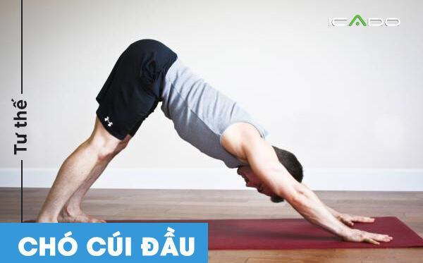 Tư thế này sẽ giúp bạn giảm tình trạng đâu lưng do ngồi quá nhiều và ít vận động.