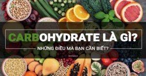 Carbohydrate là một trong ba chất dinh dưỡng đa lượng chính