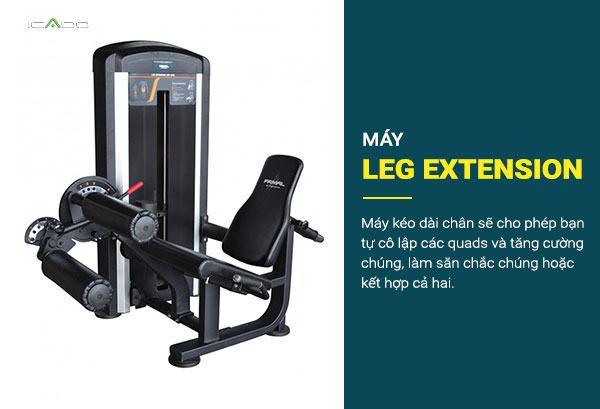 Một máy kéo dài chân sẽ cho phép bạn tự cô lập các quads