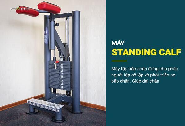 Máy tập bắp chân ngồi là một máy tập tuyệt vời để cô lập và phát triển cơ bắp chân.