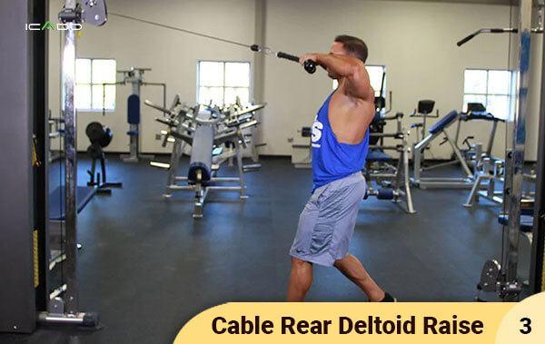 Cable Rear Deltoid Raise