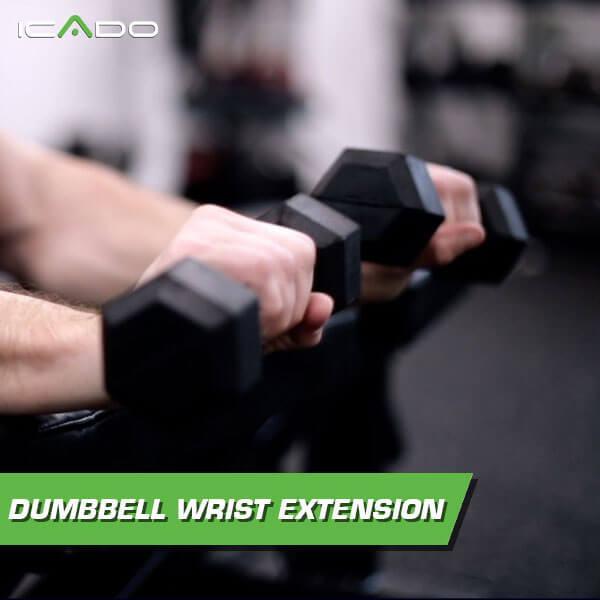 Dumbbell wrist extension