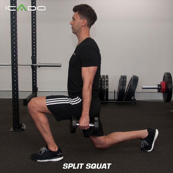 Split squat