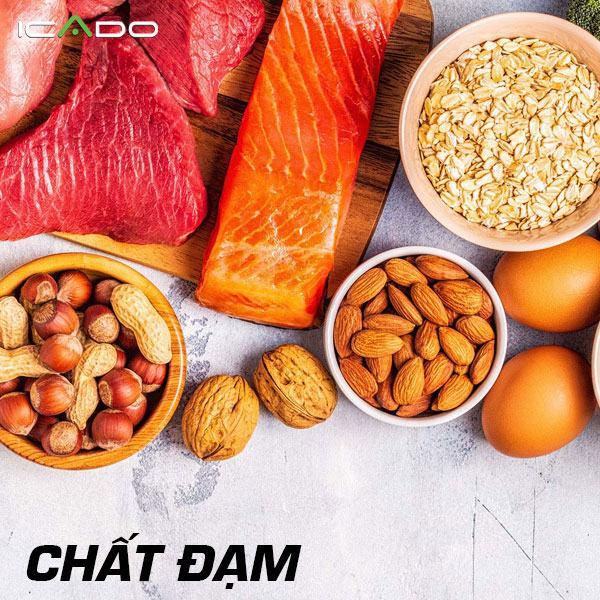 Protein - đặc biệt là protein chất lượng cao có tất cả các axit amin cần thiết là điều cần thiết để xây dựng cơ bắp.